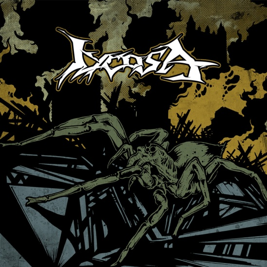 Lycosa_CDcover