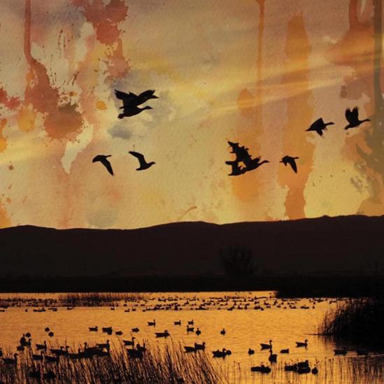 dusk023_cover1500