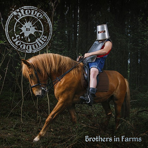 steve_n_seagulls-brothers_in_farms_500px_copy1